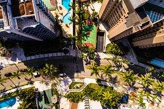 Ver la ciudad,Actividades,Actividades,Actividades aéreas,Actividades acuáticas,Actividades de aventura,Crucero por la Bahía Biscayne,Vuelo en Helicóptero