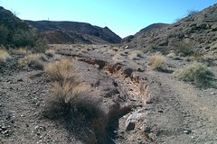 Lake Mead Educational Hiking Tour in Southern Nevada