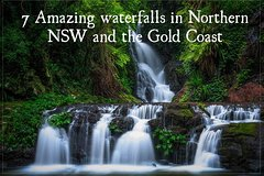 SPRINGBROOK & TAMBORINE RAINFOREST TOUR & NATUAL BRIDGE & GLOW WORM CAVE