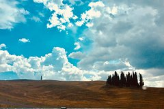 Brunello and Val d'Orcia great Tour - shared from Greve in Chianti