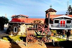 Ver la ciudad,Salir de la ciudad,Tours temáticos,Tours históricos y culturales,Excursiones de un día,Excursión a Isla Negra