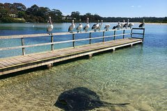Imagen Private Eurobodalla Coastal Highlights Day Tour including lunch