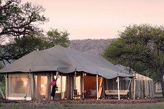 10 Day Serengeti Wildebeest Migration Safari
