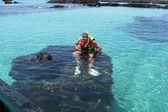 Imagen Transfer from Isabela Island to Santa Cruz Island
