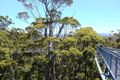 Excursions,Activities,Full-day excursions,Adventure activities,Nature excursions,Perth Tour