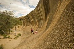 Imagen Wave Rock, York, Wildflowers, and Aboriginal Cultural Tour from Perth