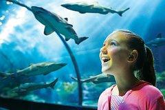 SeaWorld® Orlando Admission Ticket