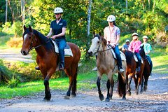 Imagen Horse Riding Tour at Glenworth Valley Outdoor Adventures