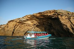 Imagen Coastal Adventure Tour From Newcastle