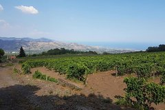 Wine Tour in Linguaglossa and in addition visit of Taormina from Giardini Naxos