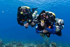 Hurghada Red Sea and Sinai PADI Advanced Open Water Diving Course 126413P48