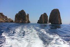 Private tour in a typical Capri boat.