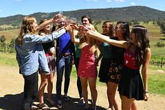Imagen Hunter Valley Wine Tour Including Lunch, Cheese, Chocolate and Distillery Tastings