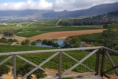 Curated Wine Tour of the Constantia Winelands South Africa