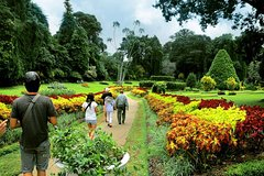 City tours,City tours,City tours,Other vehicle tours,Full-day tours,Tours with private guide,Specials,