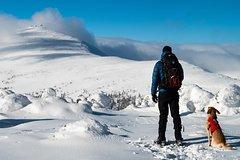 Krkonoše NP Snowshoe Hiking Day Trip with a Certified Mountain Leader