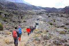 7 Days Kilimanjaro Climb Machame route
