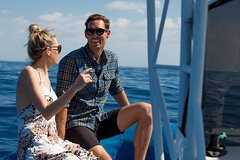 Gold Coast Harbour Cruise