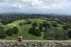 Imagen Shore Excursion: Half-Day Auckland Volcanoes Tour