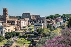 Private Colosseum Tour with Ancient Rome: VIP Experience