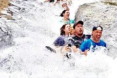 Activities,Adventure activities,Nature excursions,Excursion to El Yunque National Park