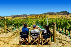 Imagen Full-Day Small-Group Guided Wine Tour in Central Otago