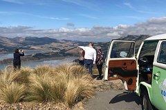 Christchurch City Sightseeing Tour