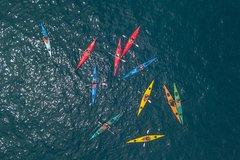 Kayak Experience - Sorrento Coast