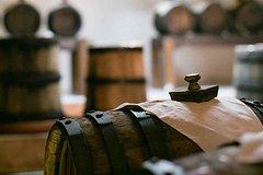 Parmigiano Reggiano, Balsamic Vinegar and Lambrusco Wine Tour from Bologna
