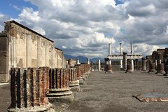 Private Trasportation To Pompeii + Lunch And Wine Tasting 6 Hours Total