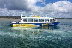 Eco River Cruise with Dolphin Spotting