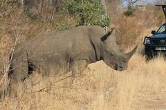 3 Day All Incl- Private Kruger Park Safari Incl- Transfer From Johannesburg