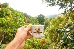 Imagen 3  day trip to Coffee Region from Bogotá