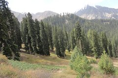 Naran Kaghan Tour Package