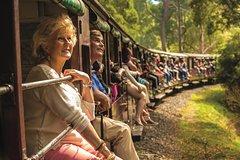 Salir de la ciudad,Actividades,Excursiones de un día,Actividades de aventura,Salidas a la naturaleza,Tren a vapor ,Excursión a Valle del Yarra