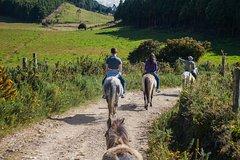 Imagen Horseback-Riding Adventure from Bogotá