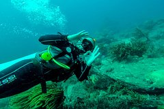 Imagen Scuba Diving, Tayrona National Park