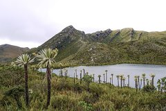 Imagen Chingaza National Park Half Day Hiking Tour from Bogotá