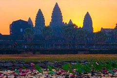 Angkor Wat Bike Sunrise 1-day Tour