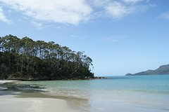 Imagen Bruny Island Day Trip from Hobart