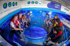 Imagen Glass Bottom Boat Adventure and AQWA General Entry Ticket