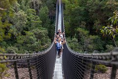 Imagen Tahune Airwalk Active Day Trip from Hobart Including Hastings Caves