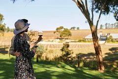 Micro-Group McLaren Vale Wine Tour from Adelaide
