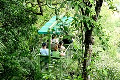 Actividades,Actividades de aventura,Salidas a la naturaleza,Tour por Ciudad de Panamá,Excursión a Selva Gamboa,Teleférico en Gamboa