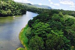 Freedom Kuranda Tour: Scenic Railway, Skyrail, Koala Gardens and Cruise