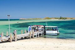 Imagen Penguin Island and Caversham Wildlife Park Day Trip From Perth