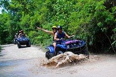 City tours,Activities,Activities,Activities,Water activities,Water activities,Adventure activities,Adrenalin rush,Sports,Sports,