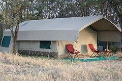 10 Days Serengeti Tented Camps Safari
