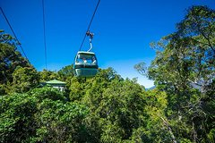 Skyrail Rainforest Cableway Day Trip from Cairns