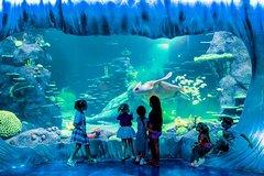 Tickets, museos, atracciones,Tickets, museos, atracciones,Entradas a atracciones principales,Entradas a atracciones principales,Acuario Sea Life